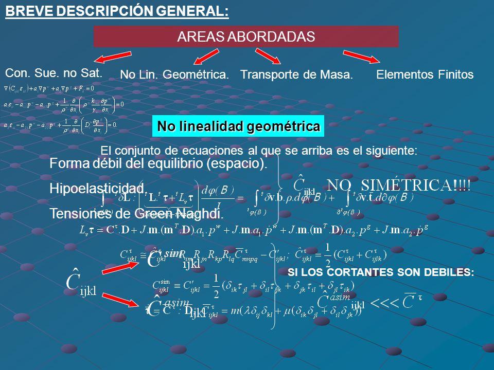 BREVE DESCRIPCIÓN GENERAL: AREAS ABORDADAS Con. Sue. no Sat. No Lin. GeométricaTransporte de Masa.Elementos Finitos Consolidación Suelos no Saturados