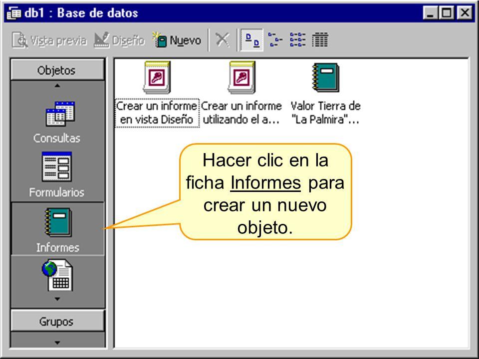 Hacer clic en la ficha Informes para crear un nuevo objeto.