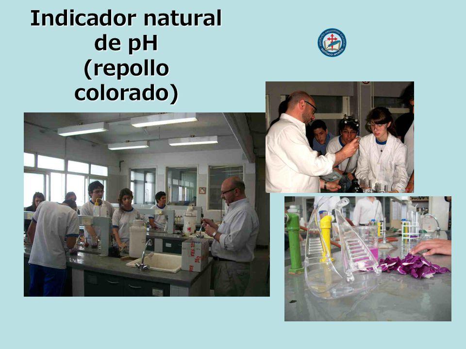 Indicador natural de pH (repollo colorado)