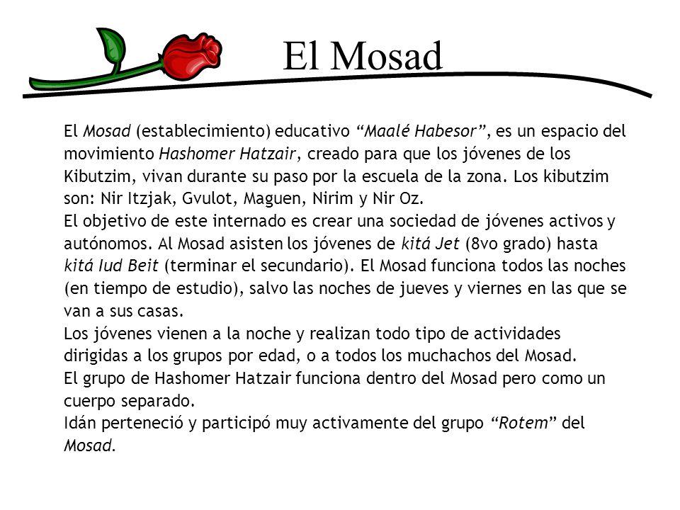 El Mosad El Mosad (establecimiento) educativo Maalé Habesor, es un espacio del movimiento Hashomer Hatzair, creado para que los jóvenes de los Kibutzi
