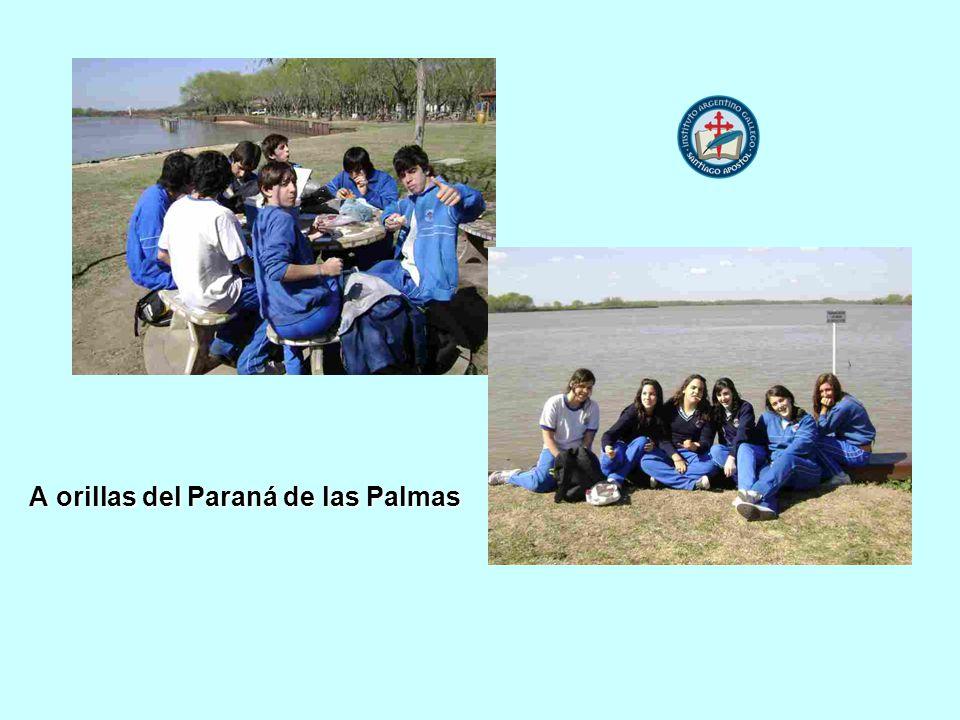 A orillas del Paraná de las Palmas