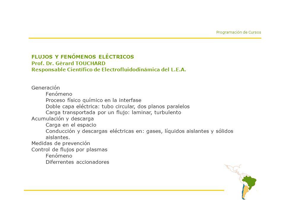 FLUJOS Y FENÓMENOS ELÉCTRICOS Prof. Dr.