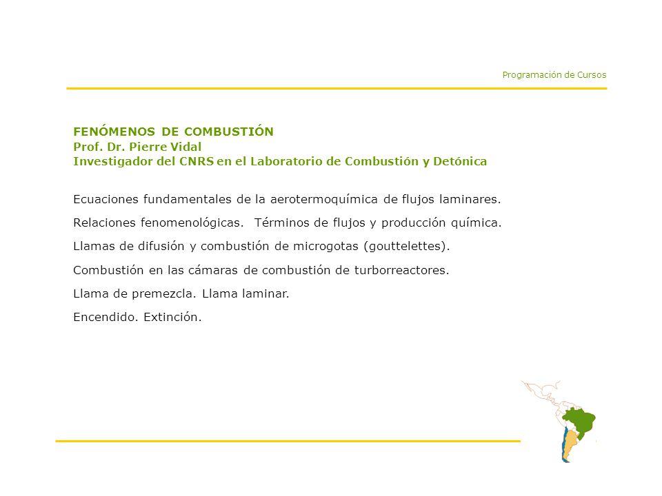 FENÓMENOS DE COMBUSTIÓN Prof. Dr.