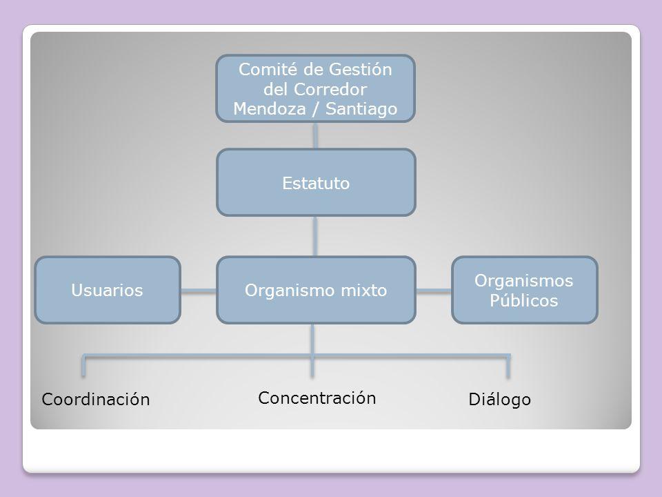 Coordinador Binacional ChileArgentina Pro- Tempore Comité de Gestión Asesor