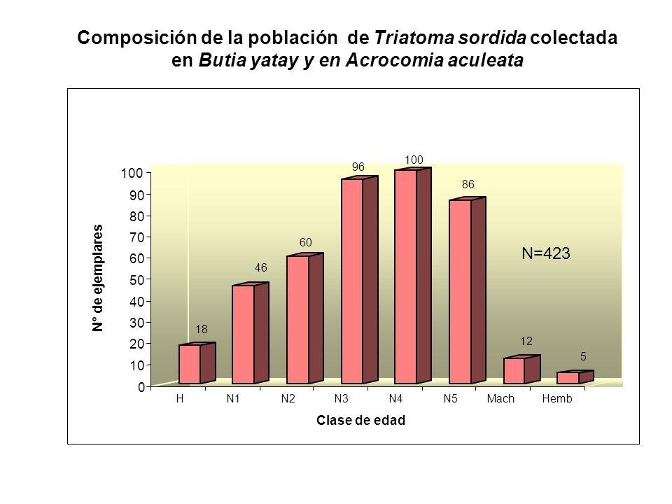18 46 60 96 100 86 12 5 0 10 20 30 40 50 60 70 80 90 100 N° de ejemplares HN1N2N3N4N5MachHemb Clase de edad N=423 Composición de la población de Triat