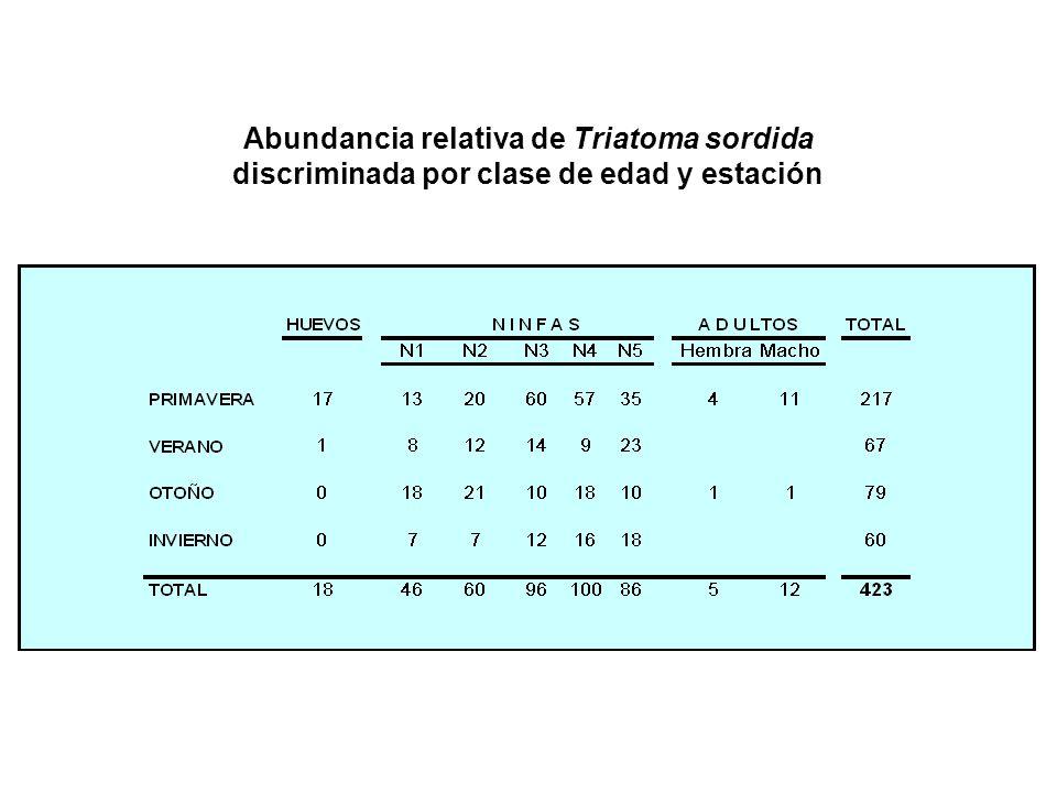 Abundancia relativa de Triatoma sordida discriminada por clase de edad y estación