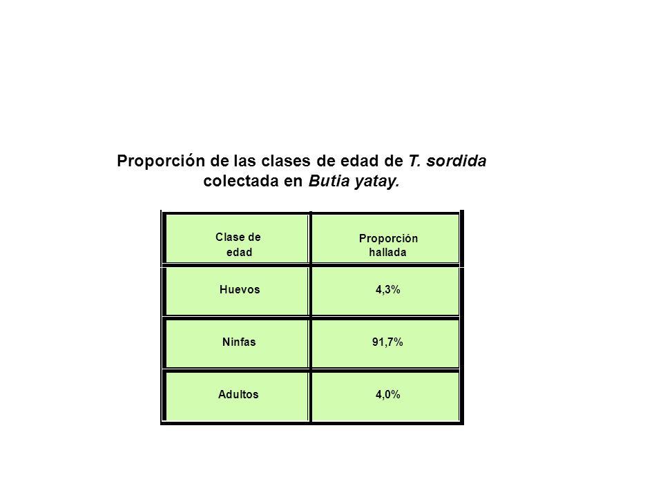 Proporción de las clases de edad de T. sordida colectada en Butia yatay. Clase de edad Proporción hallada Huevos 4,3% Ninfas 91,7% Adultos 4,0%