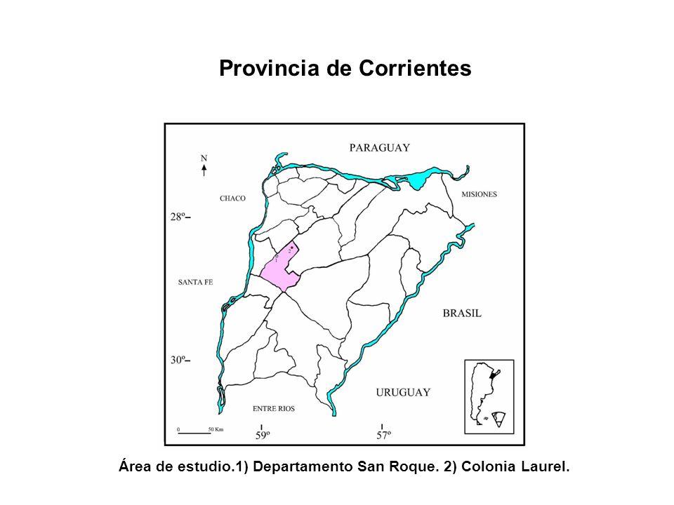Provincia de Corrientes Área de estudio.1) Departamento San Roque. 2) Colonia Laurel.