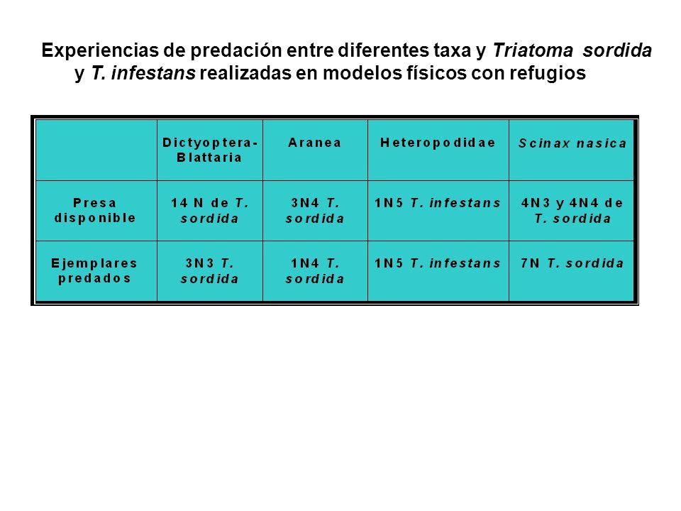Experiencias de predación entre diferentes taxa y Triatoma sordida y T. infestans realizadas en modelos físicos con refugios