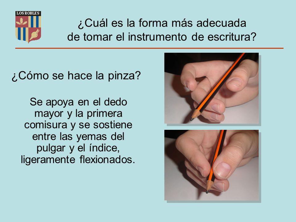 ¿Cuál es la forma más adecuada de tomar el instrumento de escritura? Se apoya en el dedo mayor y la primera comisura y se sostiene entre las yemas del
