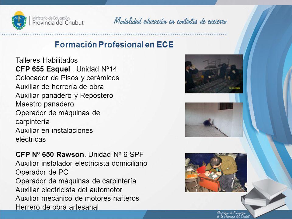 Formación Profesional en ECE Talleres Habilitados CFP 655 Esquel. Unidad Nº14 Colocador de Pisos y cerámicos Auxiliar de herrería de obra Auxiliar pan