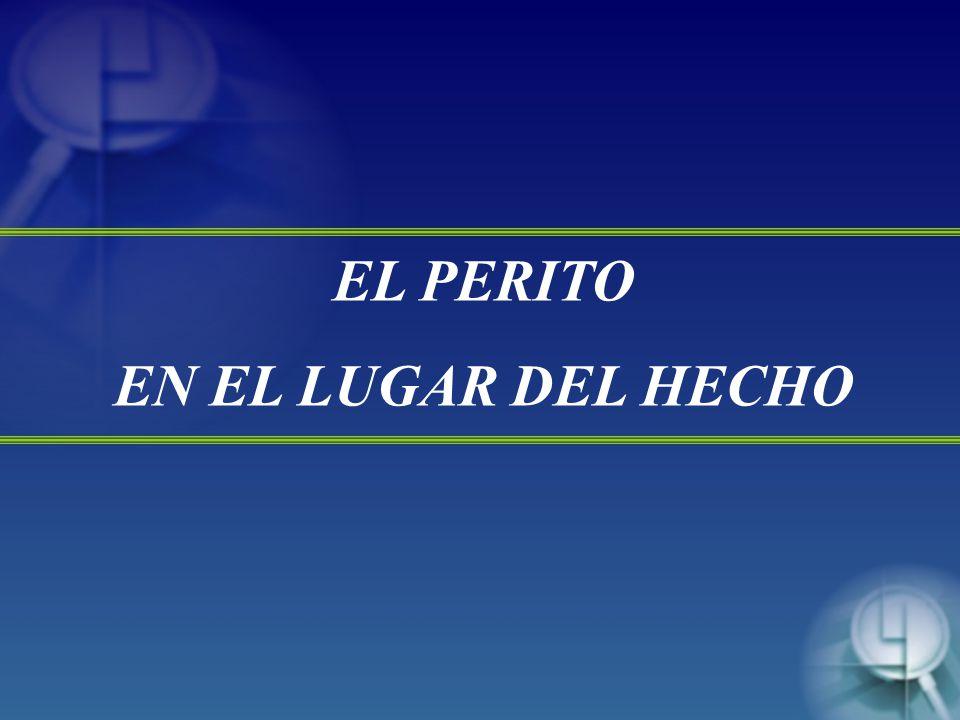 EL PERITO EN EL LUGAR DEL HECHO