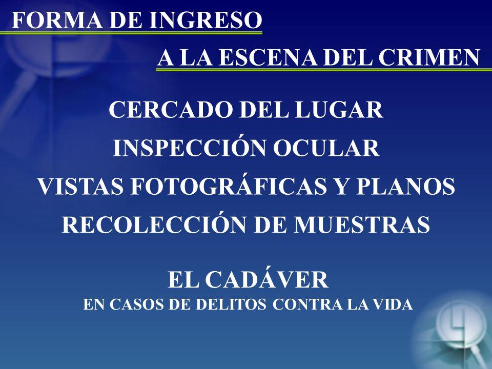EL CADÁVER EN CASOS DE DELITOS CONTRA LA VIDA CERCADO DEL LUGAR INSPECCIÓN OCULAR VISTAS FOTOGRÁFICAS Y PLANOS RECOLECCIÓN DE MUESTRAS FORMA DE INGRESO A LA ESCENA DEL CRIMEN