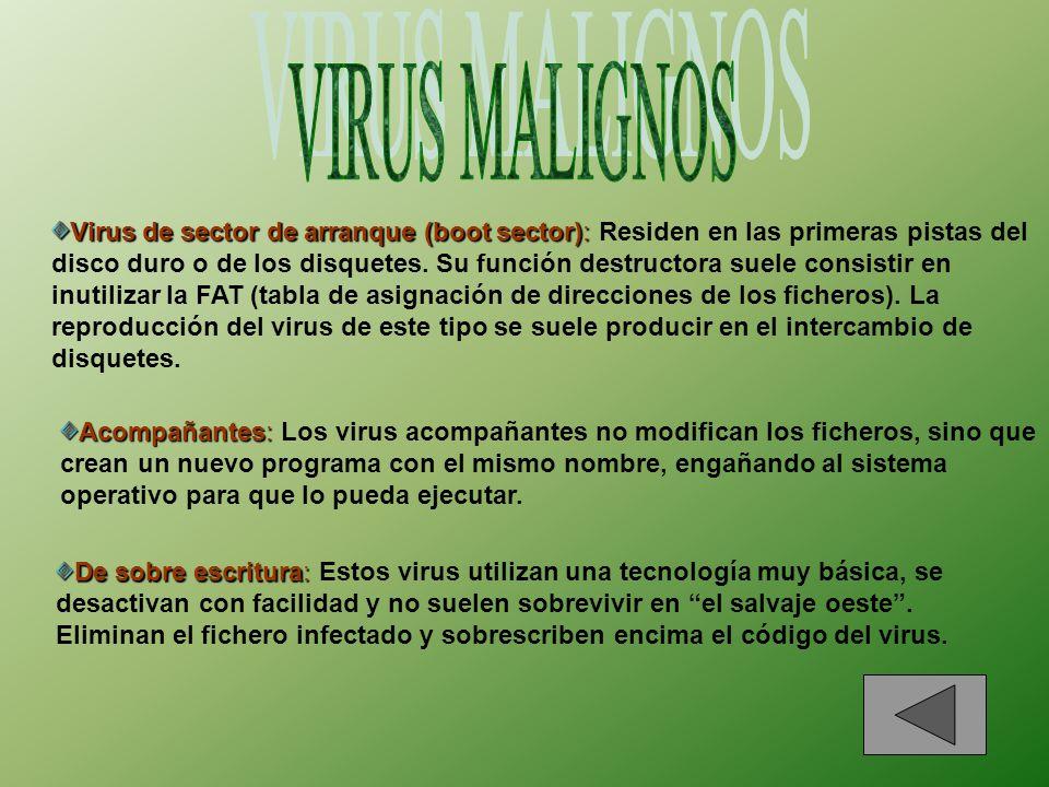 Virus de fichero de datos o de macro: Virus de fichero de datos o de macro: Estos tipos de virus infectan programas que contienen lenguajes de macros potentes.