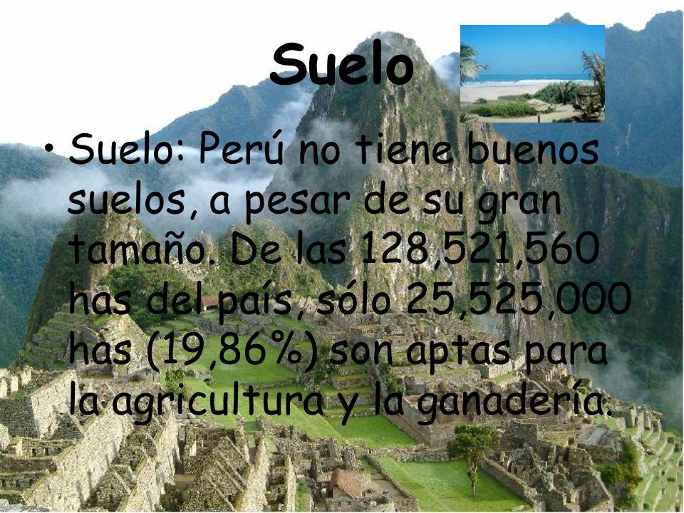 Suelo Suelo: Perú no tiene buenos suelos, a pesar de su gran tamaño. De las 128,521,560 has del país, sólo 25,525,000 has (19,86%) son aptas para la a
