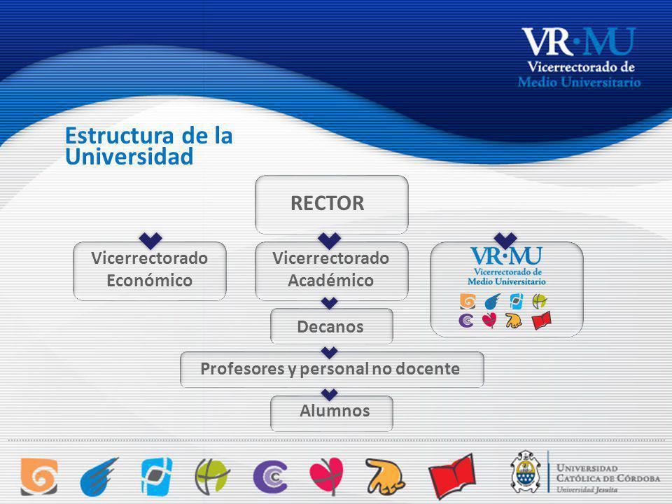 Estructura de la RECTOR Vicerrectorado Económico Vicerrectorado Académico Decanos Profesores y personal no docente Alumnos Universidad