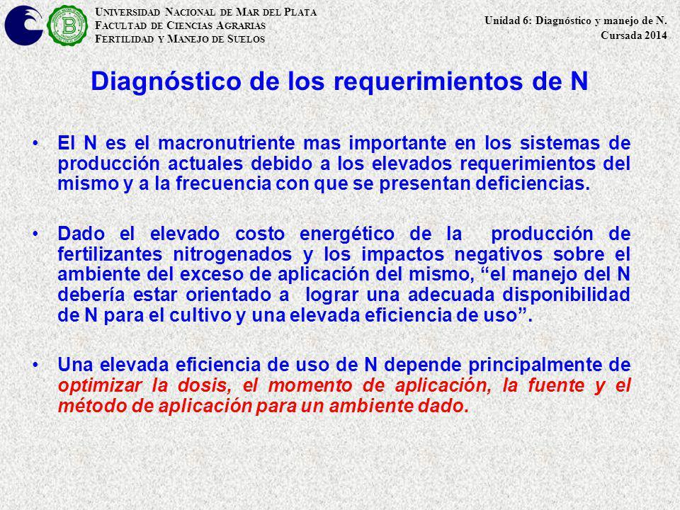 Diagnóstico de los requerimientos de N El N es el macronutriente mas importante en los sistemas de producción actuales debido a los elevados requerimi