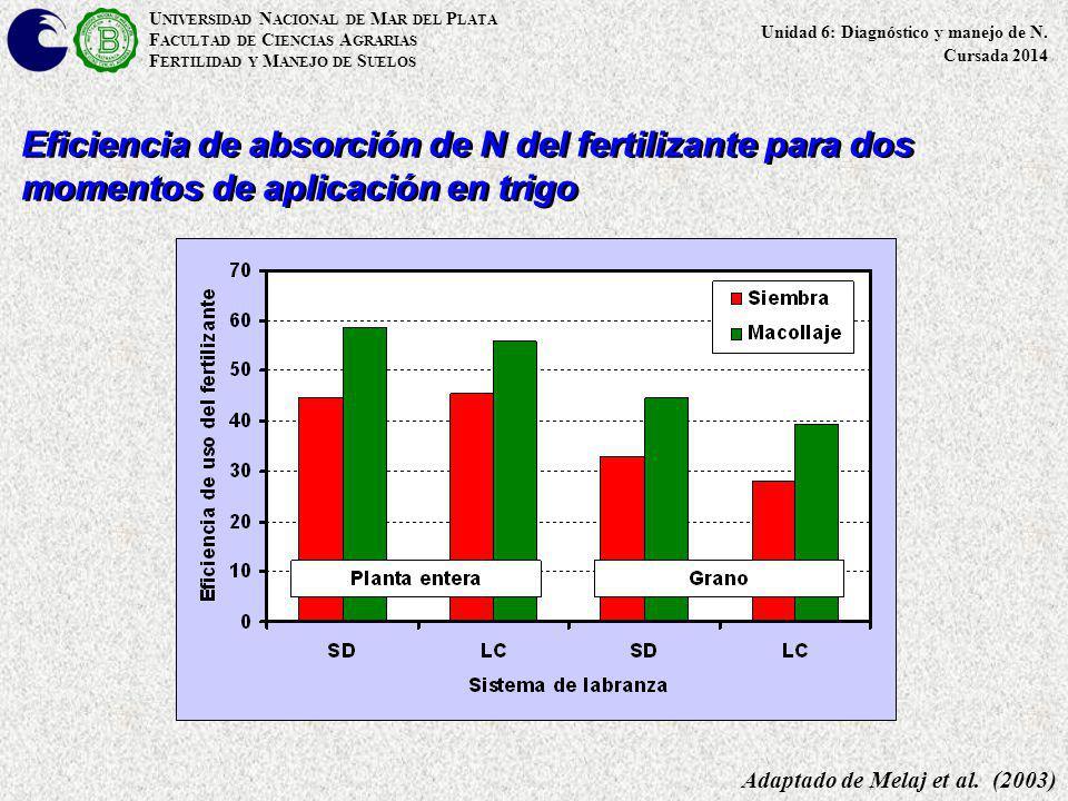 Eficiencia de absorción de N del fertilizante para dos momentos de aplicación en trigo Adaptado de Melaj et al. (2003) U NIVERSIDAD N ACIONAL DE M AR