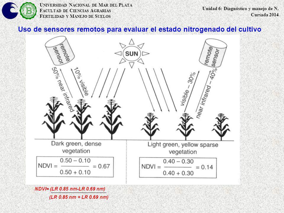 Uso de sensores remotos para evaluar el estado nitrogenado del cultivo U NIVERSIDAD N ACIONAL DE M AR DEL P LATA F ACULTAD DE C IENCIAS A GRARIAS F ER