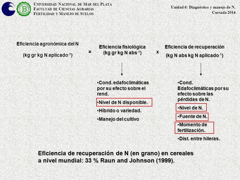 Eficiencia agronómica del N (kg gr kg N aplicado -1 ) Eficiencia fisiológica (kg gr kg N abs) Eficiencia fisiológica (kg gr kg N abs -1 ) Eficiencia d