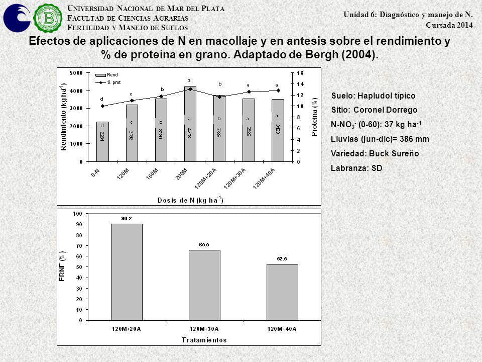 Efectos de aplicaciones de N en macollaje y en antesis sobre el rendimiento y % de proteína en grano. Adaptado de Bergh (2004). Suelo: Hapludol típico