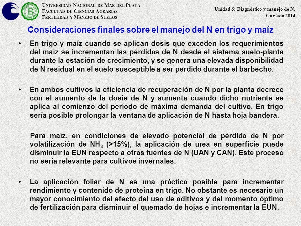 Consideraciones finales sobre el manejo del N en trigo y maíz En trigo y maíz cuando se aplican dosis que exceden los requerimientos del maíz se incre