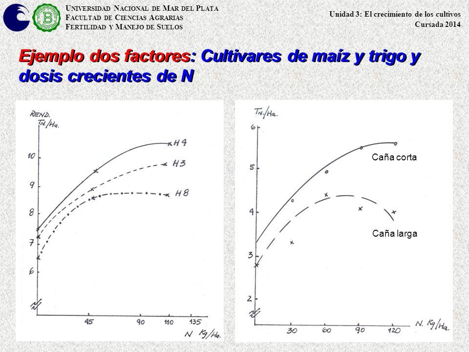 U NIVERSIDAD N ACIONAL DE M AR DEL P LATA F ACULTAD DE C IENCIAS A GRARIAS F ERTILIDAD Y M ANEJO DE S UELOS Ejemplo dos factores: Cultivares de maíz y