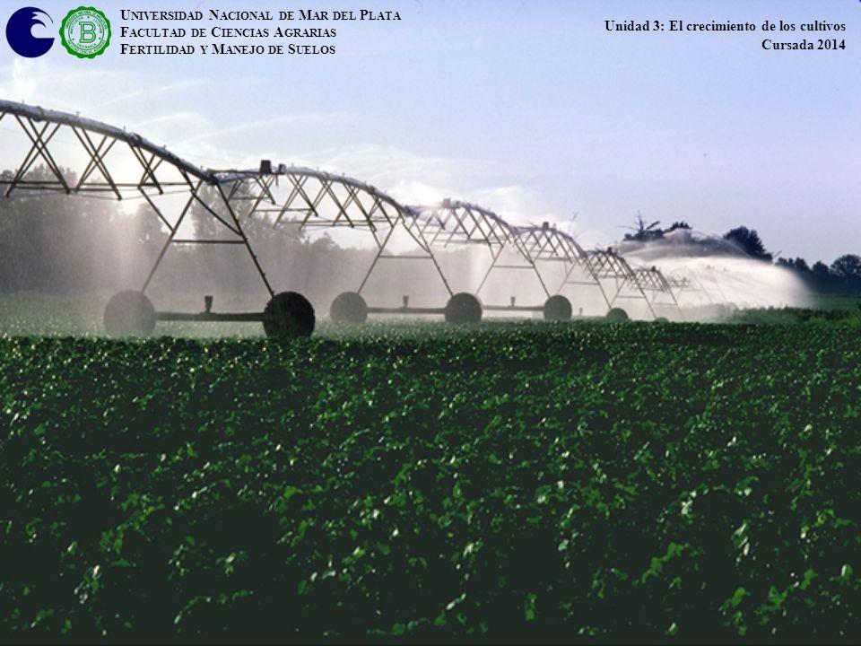 U NIVERSIDAD N ACIONAL DE M AR DEL P LATA F ACULTAD DE C IENCIAS A GRARIAS F ERTILIDAD Y M ANEJO DE S UELOS Unidad 3: El crecimiento de los cultivos C