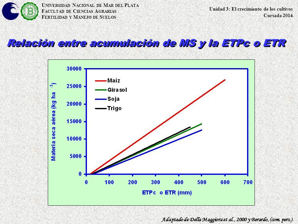 U NIVERSIDAD N ACIONAL DE M AR DEL P LATA F ACULTAD DE C IENCIAS A GRARIAS F ERTILIDAD Y M ANEJO DE S UELOS Relación entre acumulación de MS y la ETPc
