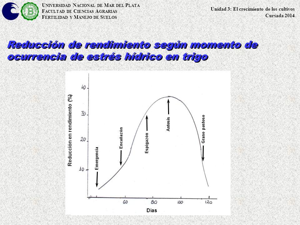 U NIVERSIDAD N ACIONAL DE M AR DEL P LATA F ACULTAD DE C IENCIAS A GRARIAS F ERTILIDAD Y M ANEJO DE S UELOS Reducción de rendimiento según momento de ocurrencia de estrés hídrico en trigo Emergencia Encañazón Espigazón Antesis Grano pastoso Días Reducción en rendimiento (%) Unidad 3: El crecimiento de los cultivos Cursada 2014