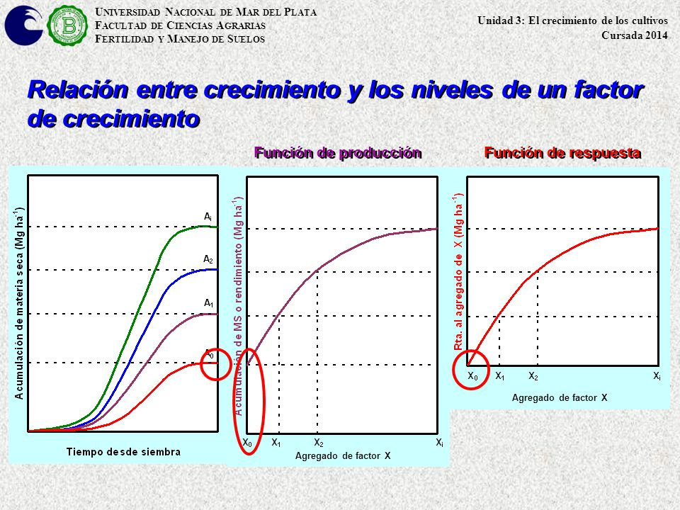 Agregado de factor X U NIVERSIDAD N ACIONAL DE M AR DEL P LATA F ACULTAD DE C IENCIAS A GRARIAS F ERTILIDAD Y M ANEJO DE S UELOS Relación entre crecim