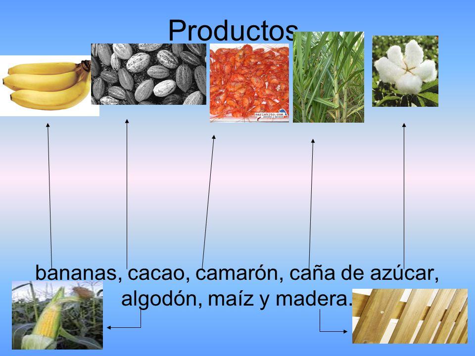 Productos bananas, cacao, camarón, caña de azúcar, algodón, maíz y madera.