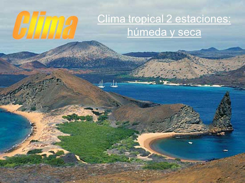 Clima tropical 2 estaciones: húmeda y seca