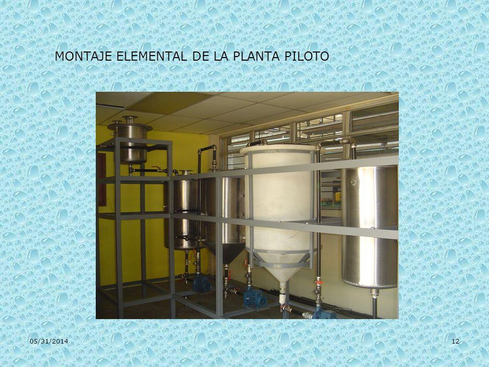 05/31/201412 MONTAJE ELEMENTAL DE LA PLANTA PILOTO