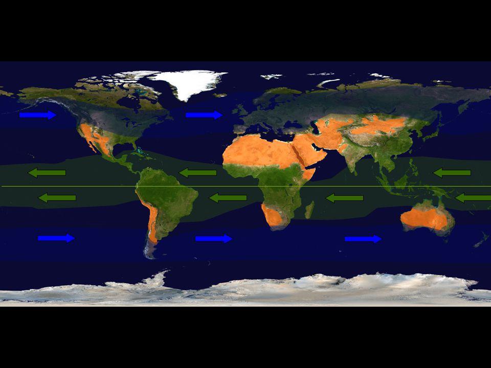 Pleistocene glaciations and desert biodiversity