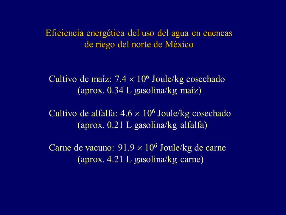 Eficiencia energética del uso del agua en cuencas de riego del norte de México Cultivo de maíz: 7.4 10 6 Joule/kg cosechado (aprox.
