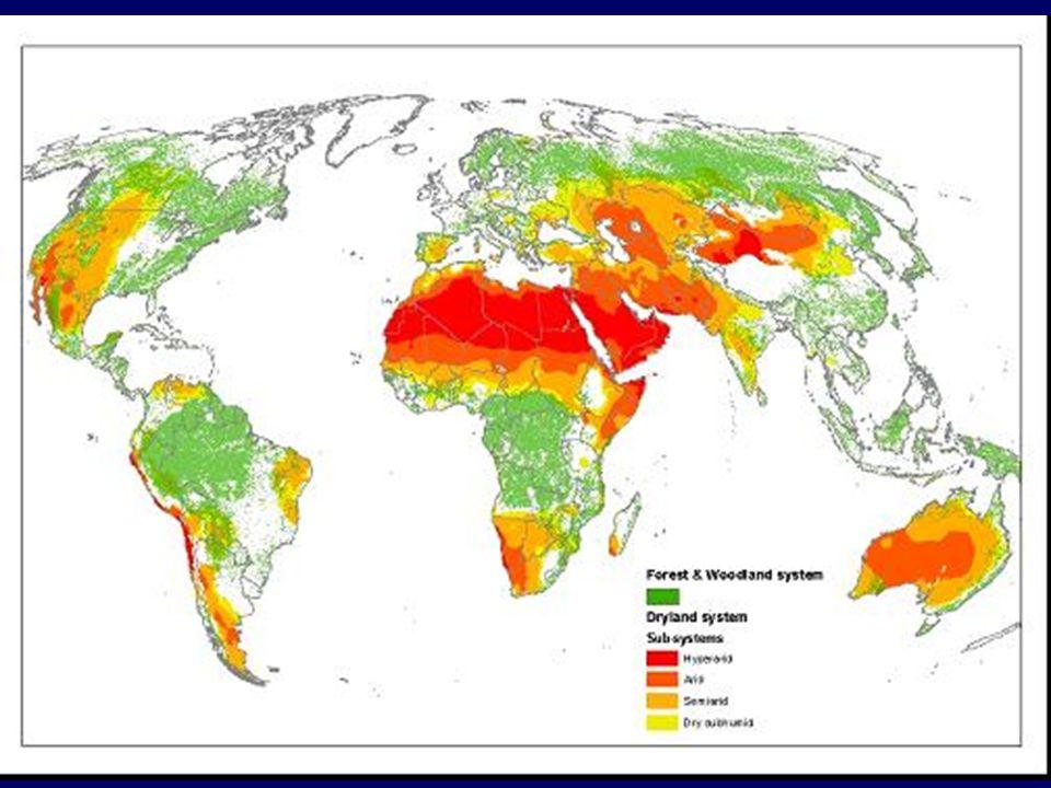 Deserts and Pleistocene Relicts