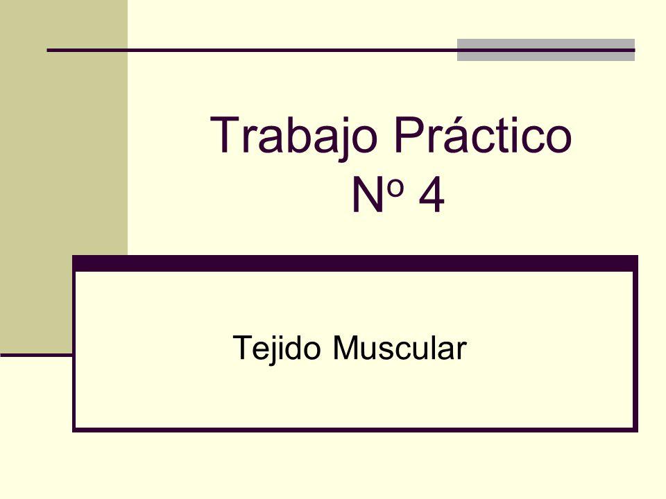 Trabajo Práctico N o 4 Tejido Muscular