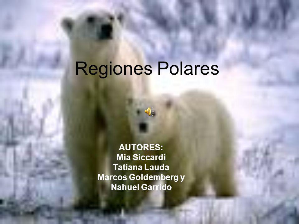 Regiones Polares AUTORES: Mia Siccardi Tatiana Lauda Marcos Goldemberg y Nahuel Garrido