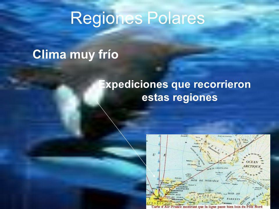 Regiones Polares Polo sur Polo norte