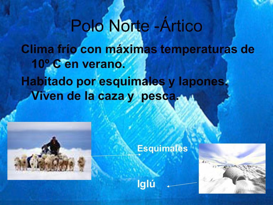 Polo Norte -Ártico Clima frío con máximas temperaturas de 10º C en verano. Habitado por esquimales y lapones. Viven de la caza y pesca. Esquimales Igl