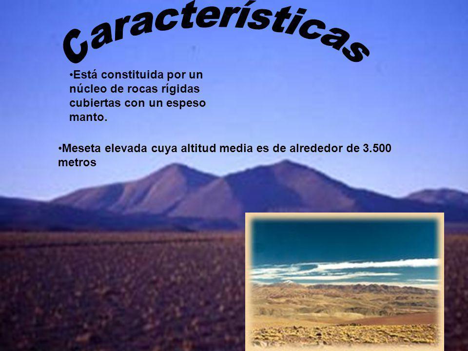 Meseta elevada cuya altitud media es de alrededor de 3.500 metros Está constituida por un núcleo de rocas rígidas cubiertas con un espeso manto.
