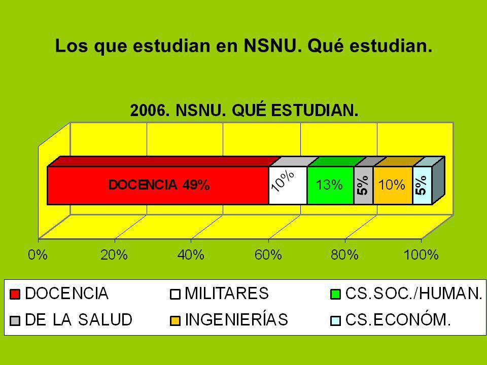 Los que estudian en NSNU. Qué estudian.