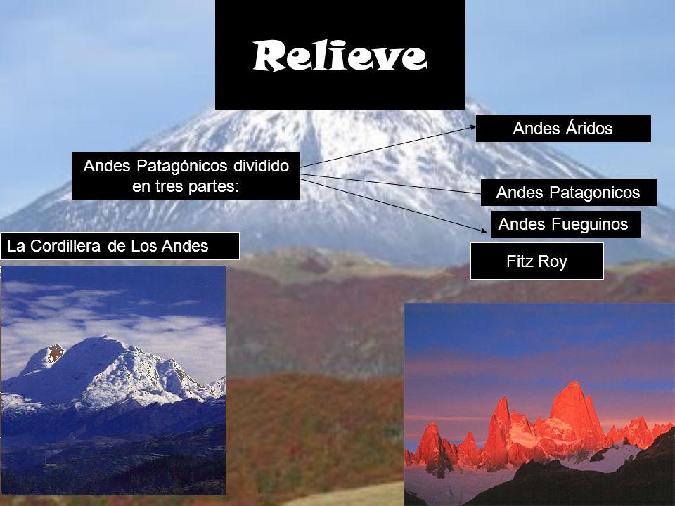 Fitz Roy Relieve La Cordillera de Los Andes Andes Patagónicos dividido en tres partes: Andes Áridos Andes Patagonicos Andes Fueguinos
