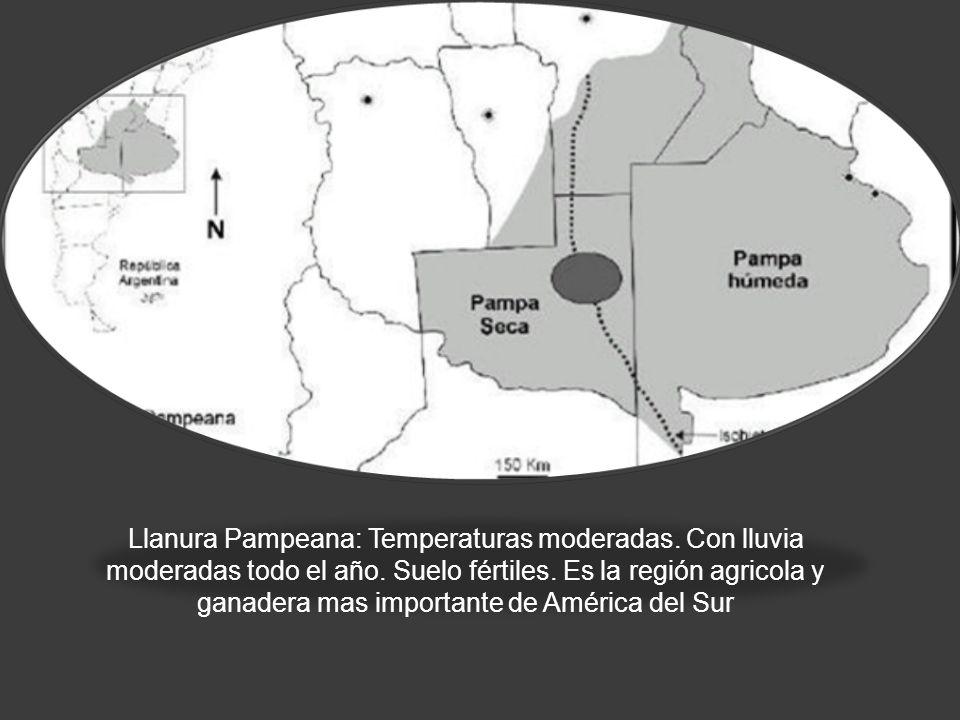 LLANURA PAMPEANA Llanura Pampeana: Temperaturas moderadas. Con lluvia moderadas todo el año. Suelo fértiles. Es la región agricola y ganadera mas impo