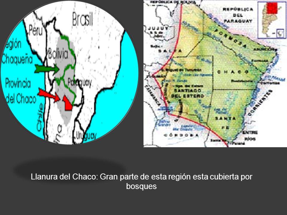 LLANURA DEL CHACO Llanura del Chaco: Gran parte de esta región esta cubierta por bosques