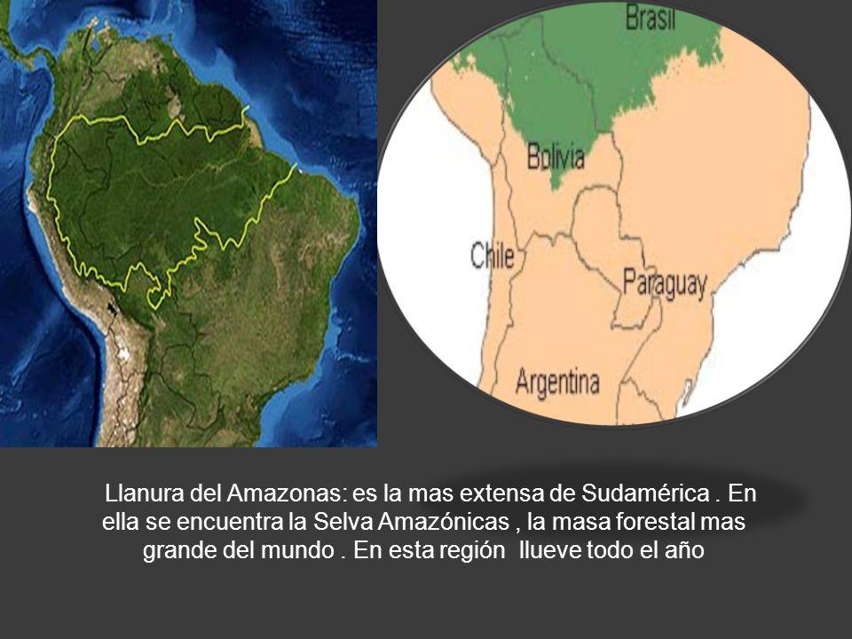 LLANURA AMAZONICA Llanura del Amazonas: es la mas extensa de Sudamérica. En ella se encuentra la Selva Amazónicas, la masa forestal mas grande del mun
