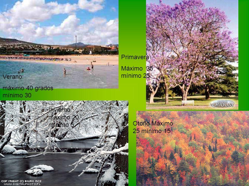 Verano: máximo 40 grados mínimo 30 Otoño Máximo 25 mínimo 15 Primavera Máximo 35 mínimo 25 Invierno máximo 20 mínimo 5