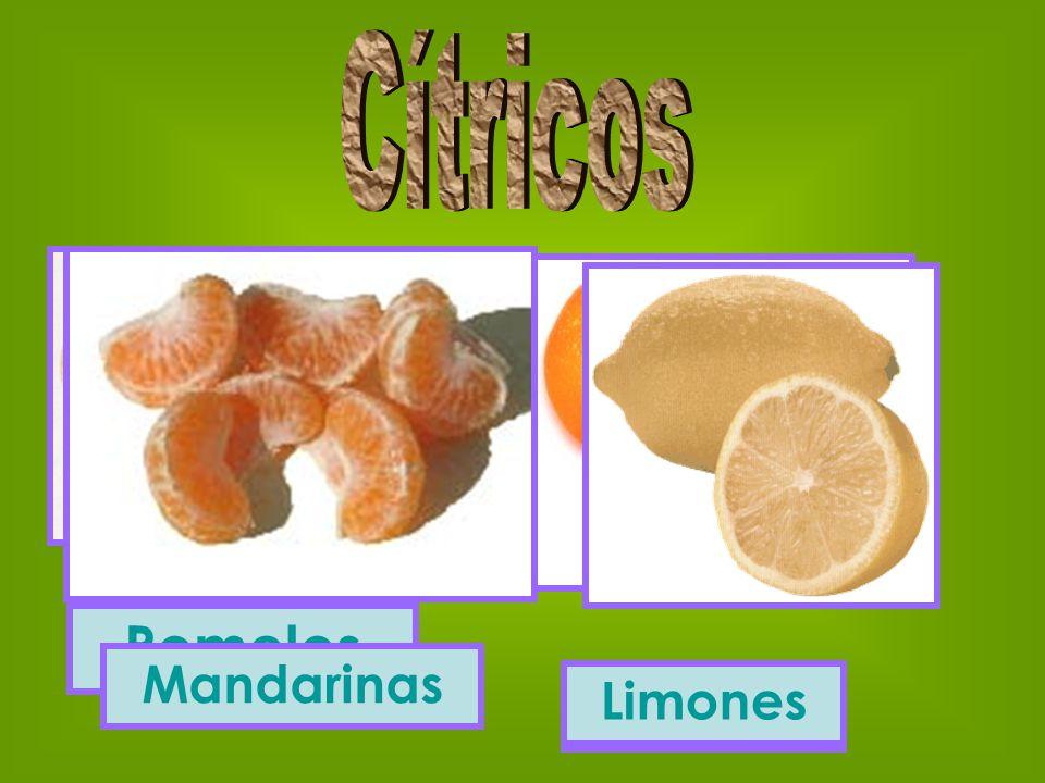Pomelos Naranjas Mandarinas Limones