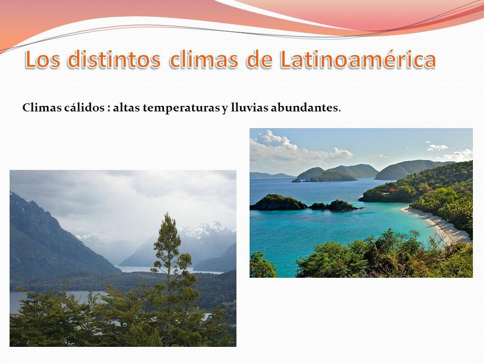 Climas cálidos : altas temperaturas y lluvias abundantes.
